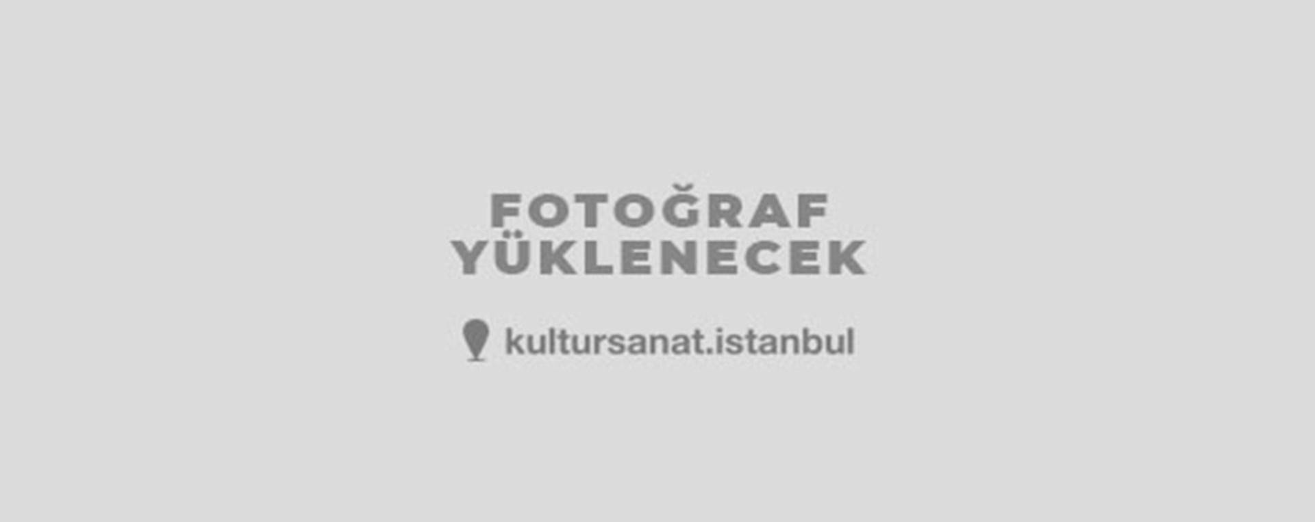 ULUSLARARASI SANATÇI FİLMLERİ