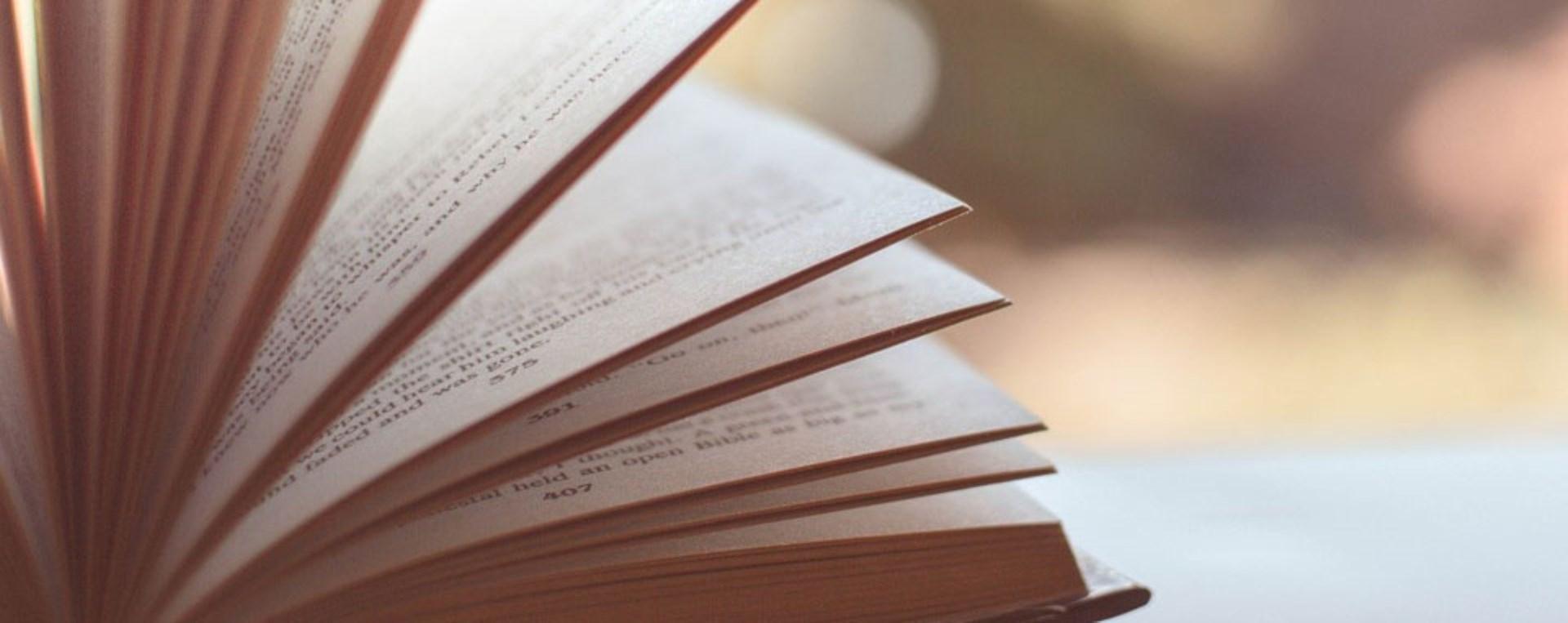 DİLEK MAYATÜRK-YÜCEL İLE KİTAP TANITIMI VE OKUMA AKŞAMI